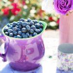 blueberries-clinicamartimaset